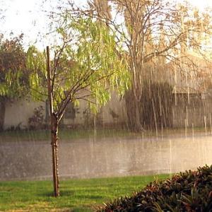 rain_sunshine
